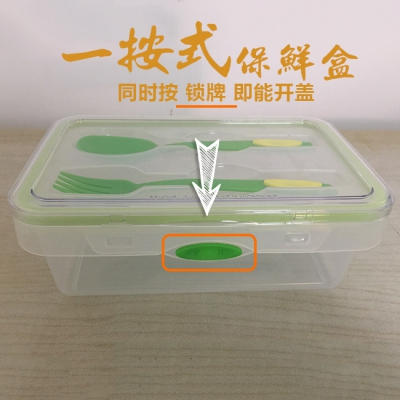 Pl-l272 1100ml long tableware lunch box